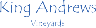 king andrews logo.png