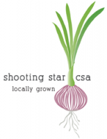shooting_star_web_logo.png